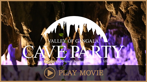 CAVE PARTY PROMOTION VIDEO